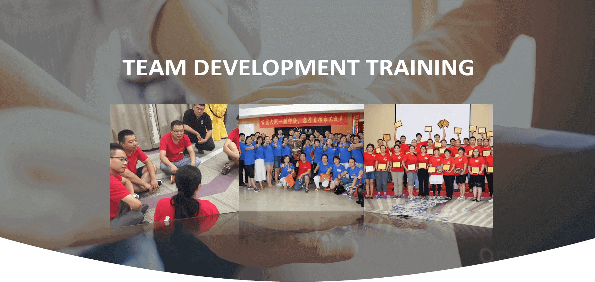 Team Development Training